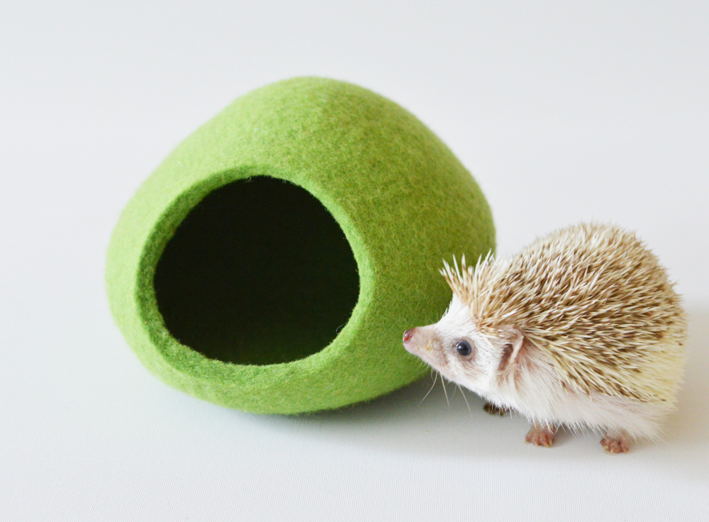 Hedgehog bed made of Tyrolean wool