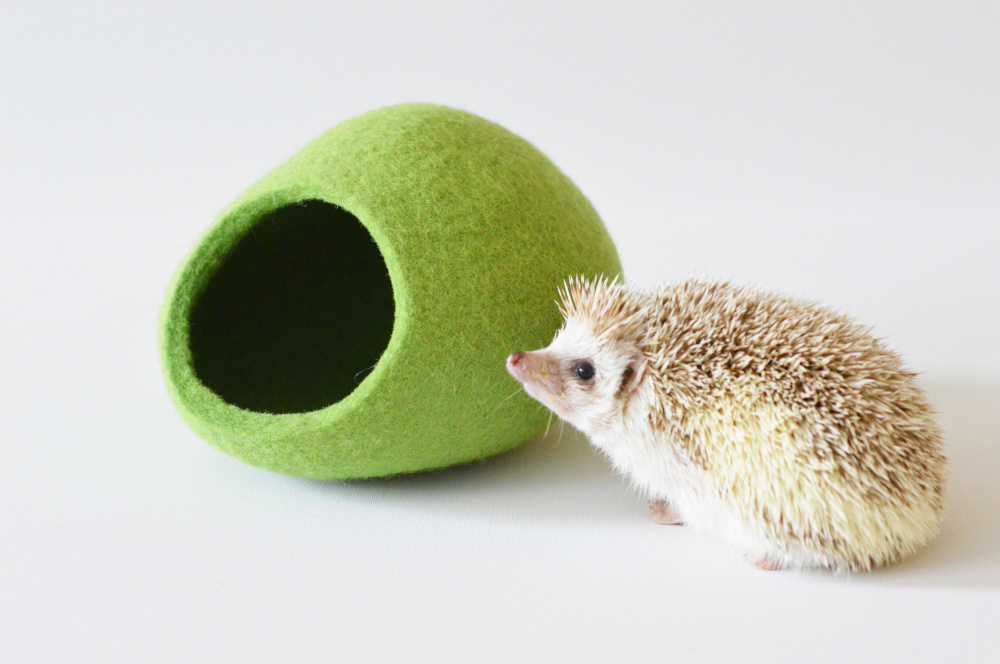 Hedgehog bed made of Tyrolean wool picture no. 3