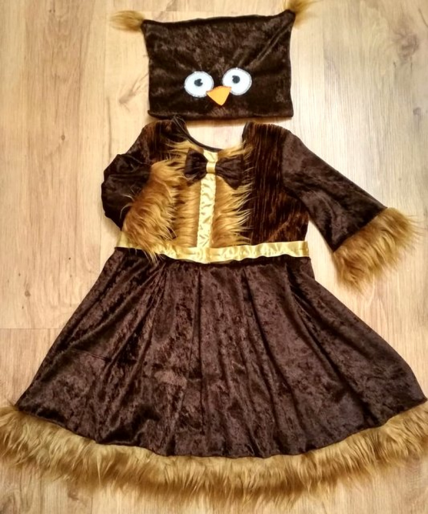 Owl carnival costume for the girl picture no. 2