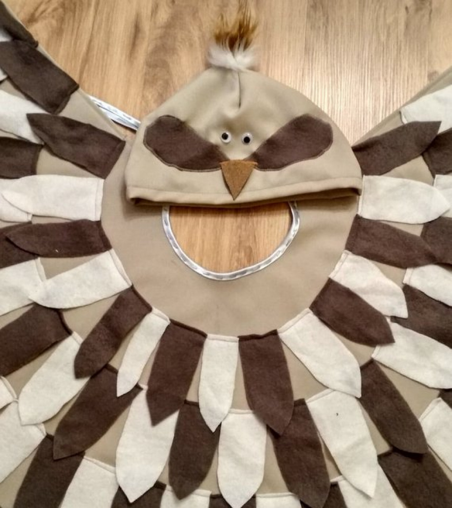 Bird carnival costume for kids