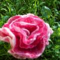 Rose magnificent - Flowers - felting