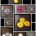 Hair accessories - Accessory - beadwork