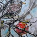""" Thrush and apple "" - Oil painting - drawing"