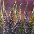 Lupine dance 30x100 - Oil painting - drawing